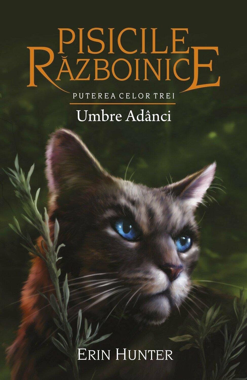 Pisicile Razboinice Umbre Adanci Vol 17
