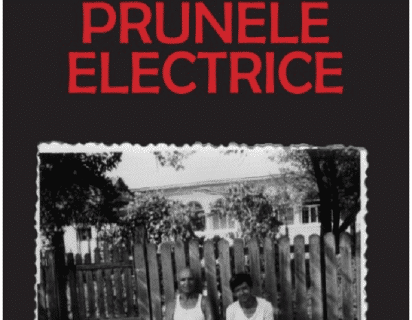 Prunele Electrice