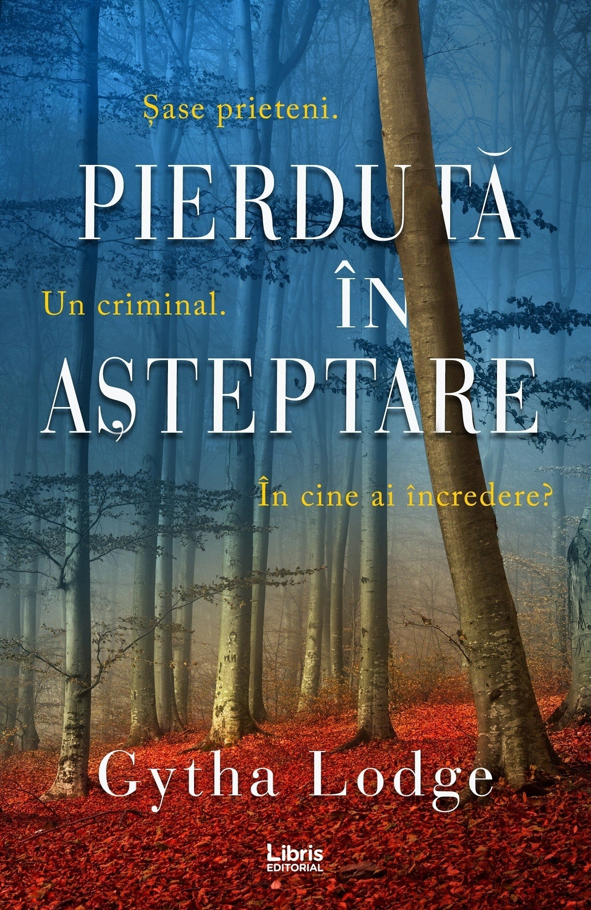Pierduta In Asteptare